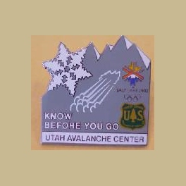 SALT LAKE CITY 2002 OLYMPICS FOREST SERVICE UTAH AVALANCHE CENTER PIN