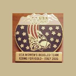 LARGE 2006 TORINO OLYMPIC PINS USOC USA WOMENS BOBSLED USA TEAM PIN LTD 500